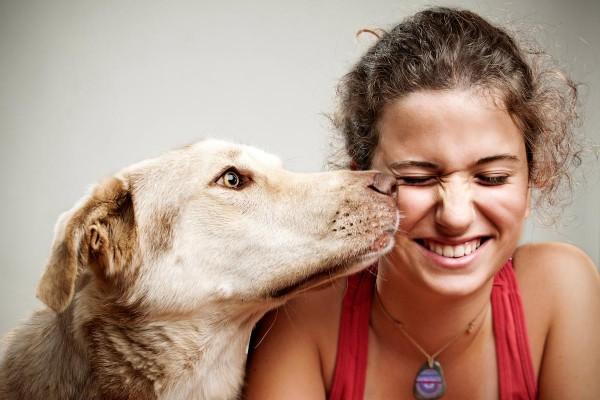 Evcil hayvanlarınızı kaybetme derdine son